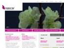 La web agency nascar lancia in rete la nuova versione di Bridgestonemoto.it