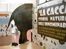 Al Bioparco di Roma la mostra 'La cacca: storia naturale dell'innominabile'