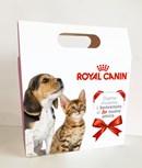 #Adottaunamico: la campagna Royal Canin a sostegno delle adozioni di cani e gatti ospiti delle strutture ENPA*