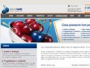Nuovo sito e web marketing per Brianza Tende SpA