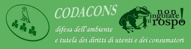 """Chiude l'Informagiovani di Francavilla al Mare, Chieti - Il Codacons Abruzzo: """"Assurdo!"""""""