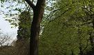 25 aprile, jogging e pic-nic nei parchi di Roma - La Repubblica